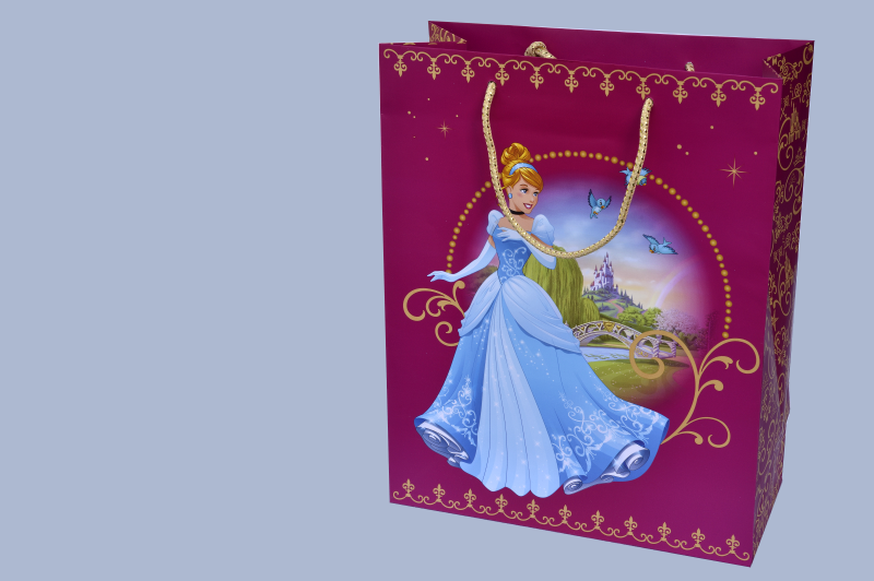 Sac cadeau Disney Princess